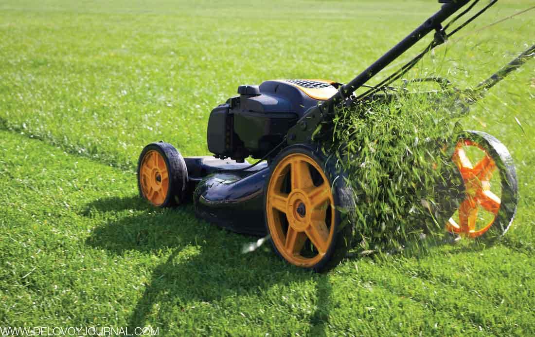 Подстрижка травы