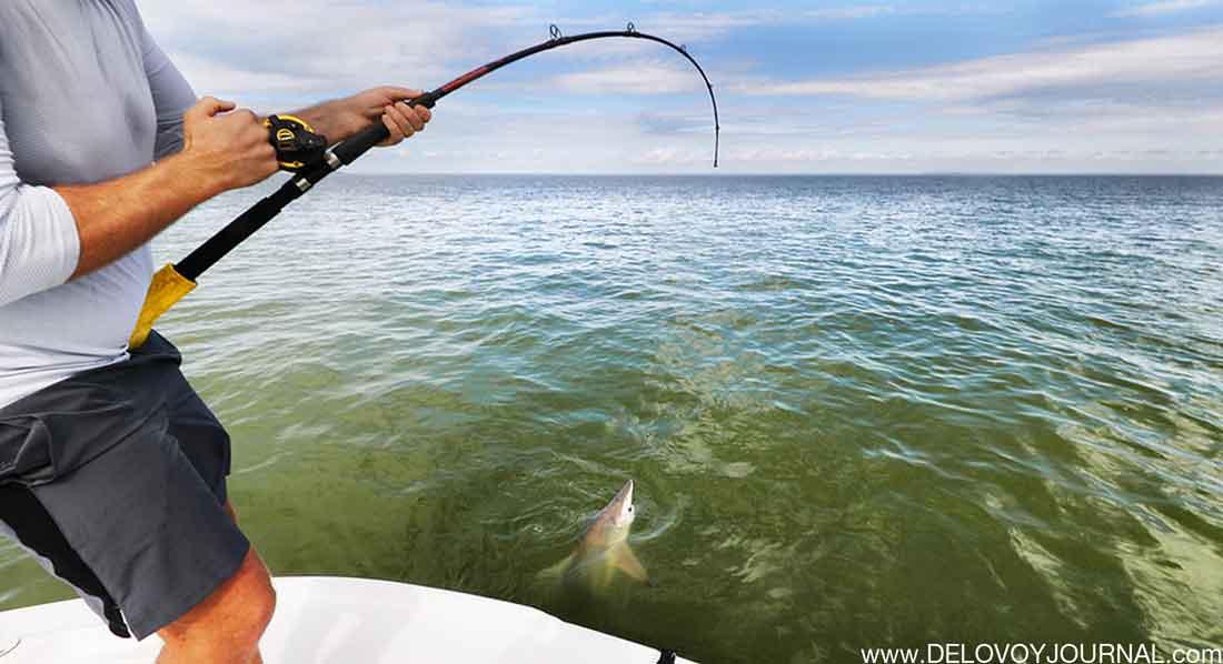 Флорида-кийс Рыбалка на акул