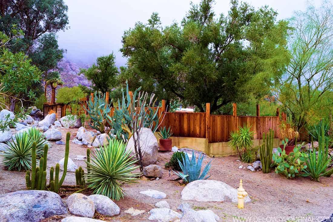 Камни в дизайне пустыни Америки