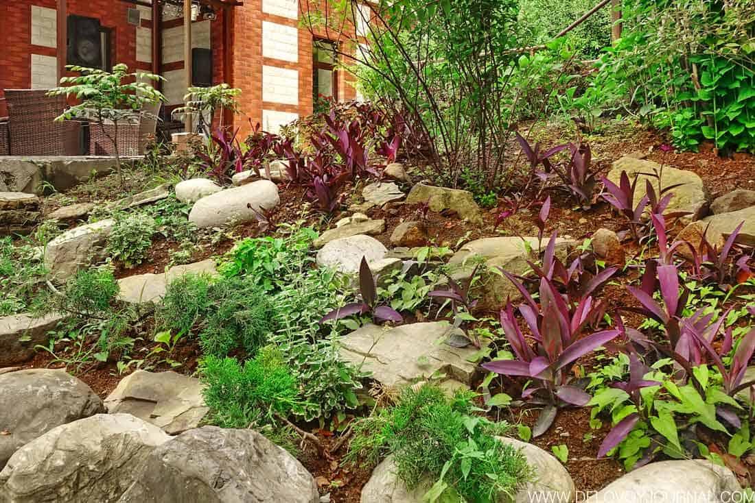 Натуральные камни на склоне
