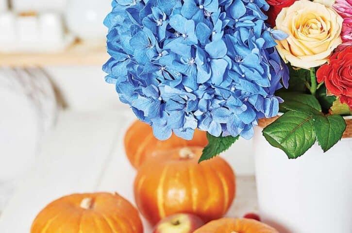 День Благодарения праздник урожая