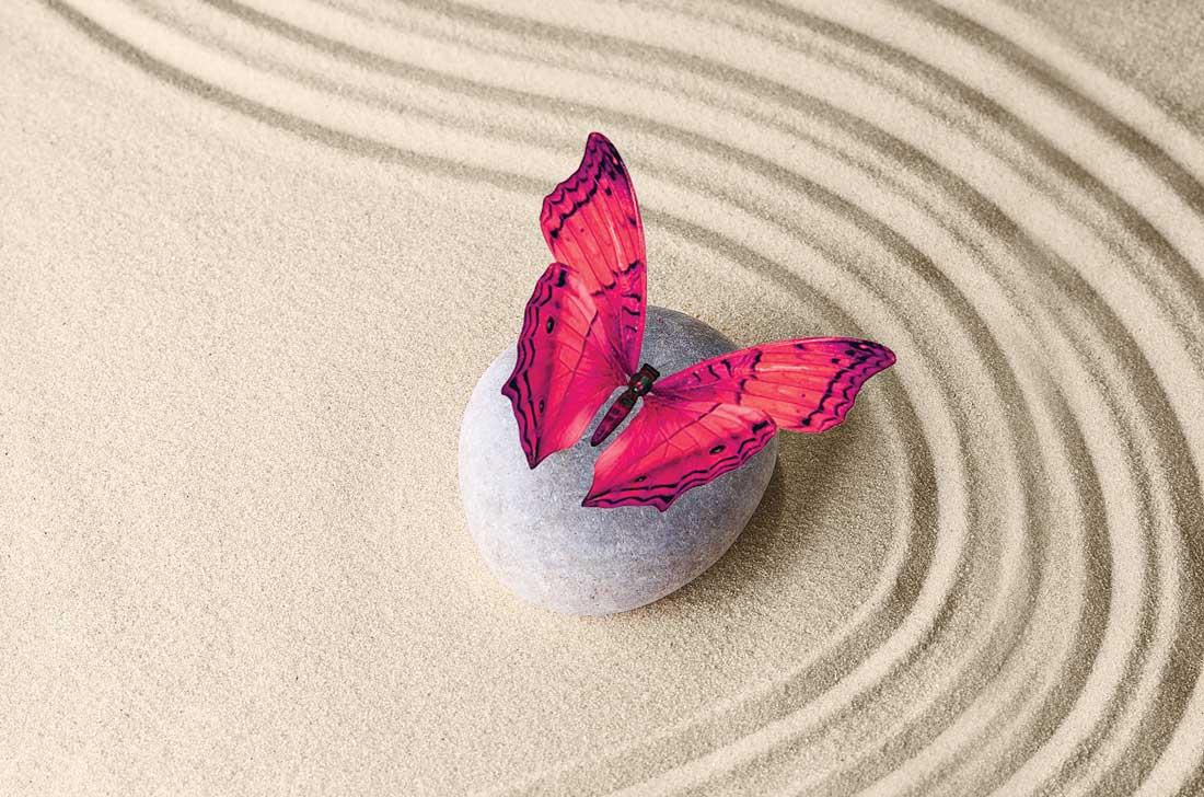 Гармония и баланс