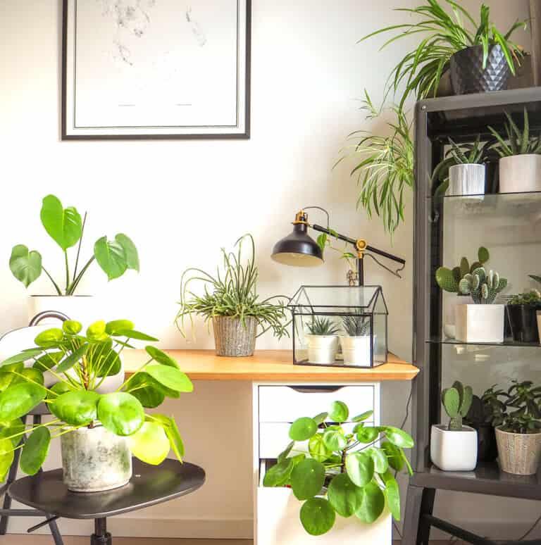 От дома до работы один шаг: создаем домашний офис
